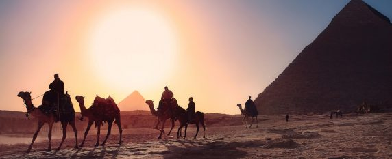 Un séminaire au milieu des mythiques pyramides du Caire