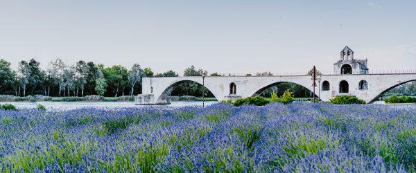 Un séminaire à Avignon, au cœur de la Cité des Papes - 1