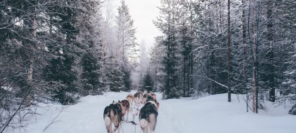 Un séminaire sur le cercle polaire, en Laponie Finlandaise