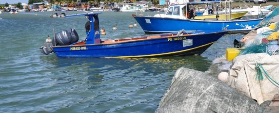 Un séminaire riche en couleurs en Guadeloupe