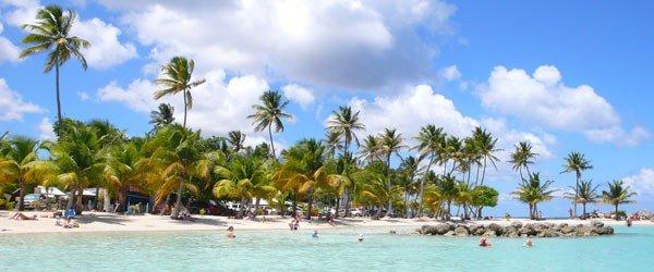 Un séminaire riche en couleurs en Guadeloupe - 1