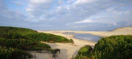 Un séminaire entre plage et forêt à Moliets