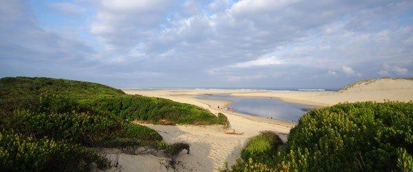 Un séminaire entre plage et forêt à Moliets - 1