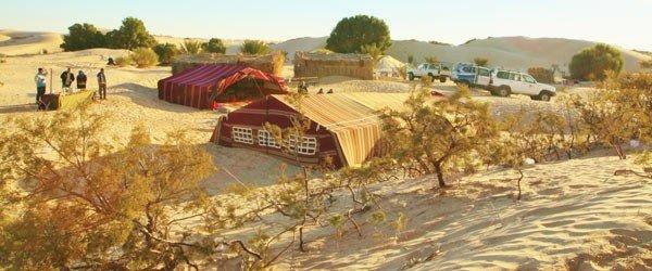 Tozeur, votre séminaire dans une oasis aux portes du désert - 1