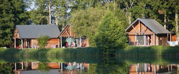 Un séminaire 100% nature, au cœur de la forêt à Rillé - 1